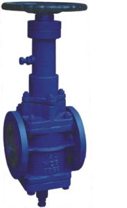 Orbit Plug Valve pictures & photos