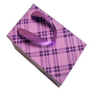 Art Paper Gift Shopping Bag for Clothes with Ribbon pictures & photos