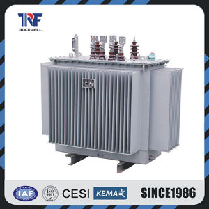 15kv Oil Immersed Distribution Transformer pictures & photos