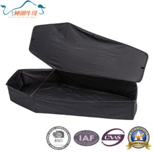 Pop up Steel Pole Cover Tent pictures & photos