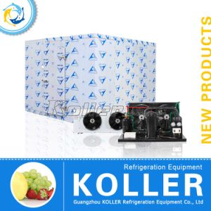 Cold Room Chiller pictures & photos