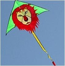 Sky Kite - Lion Tk002 pictures & photos