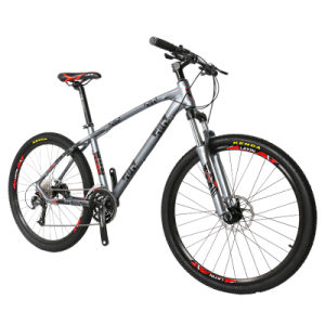 Safe Stable Men′s Mountain Bike with Full Suspension Fork pictures & photos