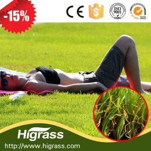 Good Quality Artificial Landscaping Grass pictures & photos