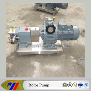 Stainless Steel Pudding Rotor Pump Tomato Sauce Rotary Lobe Pump pictures & photos