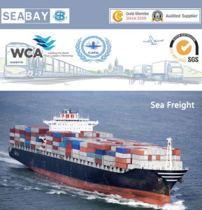 Shanghai Ocean Freight Forwarder to Antwerp Belgium pictures & photos