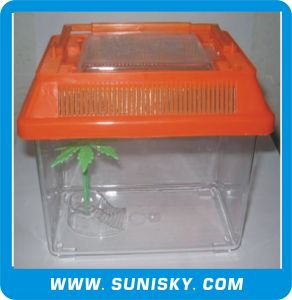Transparent Plastic Fish Tank pictures & photos