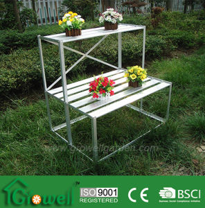 Greenhouse Aluminium Staging / Shelving (accessories S323S) pictures & photos