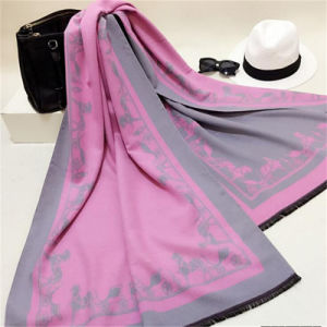 Sexy Fashion Pashmina Cashmere Woman Scarves Wholesale pictures & photos