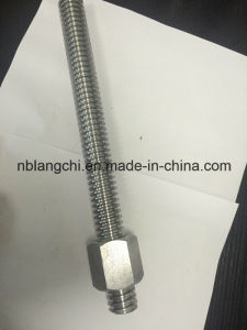 Trapezoidal Thread Acme Rod Leadscrew with Hex Nuts Tr30X6 pictures & photos