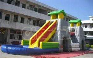 Giant Inflatable Double Water Slide with a Bridge and Two Pool for Adults and Kids pictures & photos