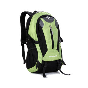 Child School Bag Backpack New Models pictures & photos
