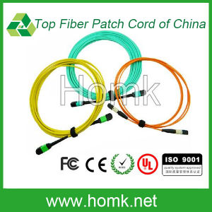 MPO-MTP Sm/mm Fiber Patch Cord 40GB pictures & photos