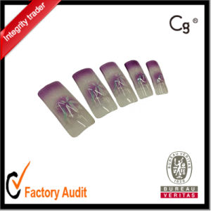 Airbrush Design Nail Tip, False Nail Tip OEM and ODM pictures & photos