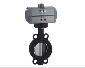 Pneumatic Actuatoe with Wafer Butterfly Valve pictures & photos