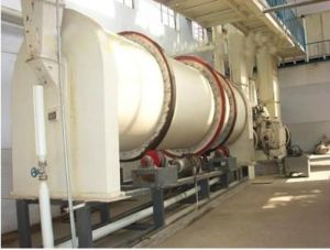 Soybean Pretreatment Line, Soybean Cleaning pictures & photos