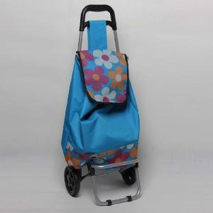 Folding Shopping Trolley/Portable Shopping Cart pictures & photos
