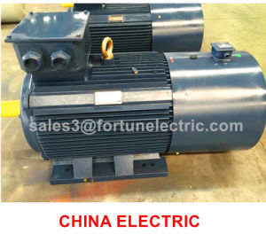 Typcx Variable Frequency Speed Adjustable AC Motor pictures & photos