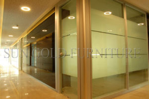 New Fashion Aluminium Glass Soundproof Office Partition (SZ-WS565) pictures & photos