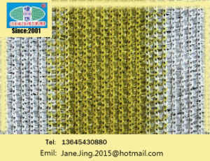 Shade Net/Scaffolding Net/Shade Sail/Green Mesh/Construction Safety Net/Sun-Shade Net/Safety Net