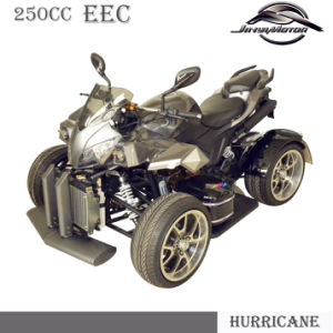 Cool Design EEC ATV 250cc for European pictures & photos