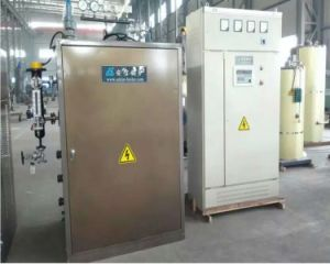 Electric Boiler (LDR WDR series) pictures & photos