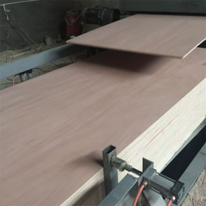 WBP Glue Plywood Okoume Face and Back 2.7mm-25mm pictures & photos