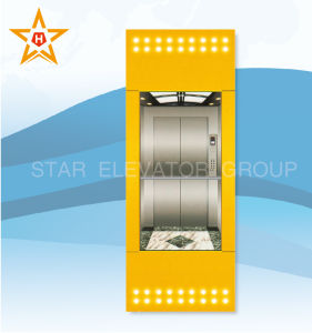 Panoramic Elevator (square type) with Back Glass Wall pictures & photos