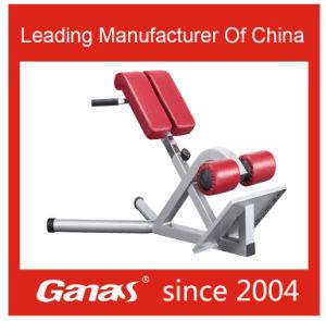 Mt-6041 Ganas Roman Chair Fitness Equipment Gym Equipment