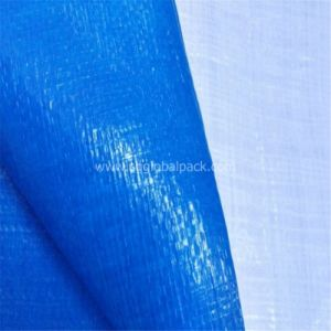 Blue White Laminated PE Tarpaulin for Truck Cover pictures & photos