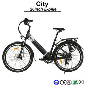 Samsung Electric Bicycle Panasonic E-Bicycle Side Pull Battery Electric Bicycle (TDF05Z) pictures & photos