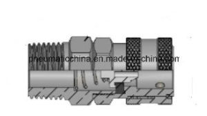 Quick Release Coupling, Coupler, Pneumatic Fitting pictures & photos