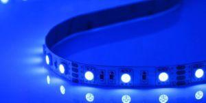 5050 12V Purple Flexible LED Strip Light pictures & photos