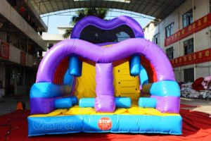 China Factory Inflatable Slide with Obstacle Entrance Chsl652 pictures & photos
