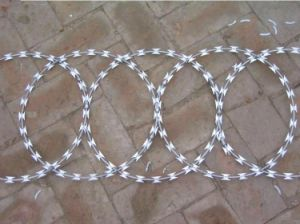 Electro Galvanized Razor Barbed Wire for Fence / Concertina Razor Barbed Wire pictures & photos