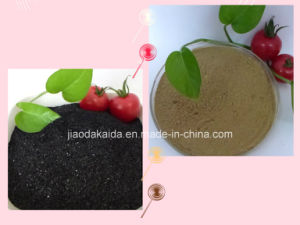 Water Soluble Fulvic Acid 80%