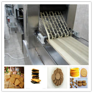 Full Set New Design Gas Biscuit Production Line pictures & photos