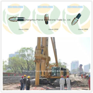 Bullet Teeth Rock Bit Auger Teeth Drill Bits (RL07) for Hole Digger pictures & photos
