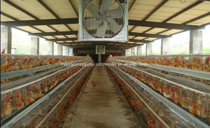 1220mm /48′′ Without Shutter Wall Mounted Poultry House Exhaust Fan pictures & photos