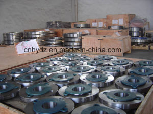 Stainless Steel Alloy Forging Flanges
