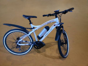 Ce Power Champion Electric Bike with Lithium Battery (BN2604) pictures & photos