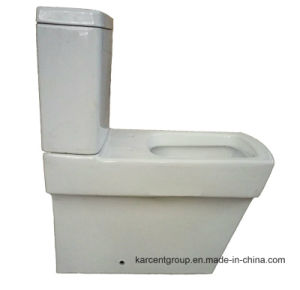 Two Piece Ceramic Toilet Ce Washdown Water Closet 00300 pictures & photos