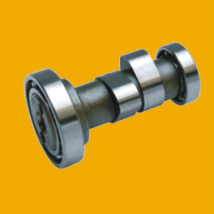 OEM India Motorcycle Camshaft for Motorcycle pictures & photos