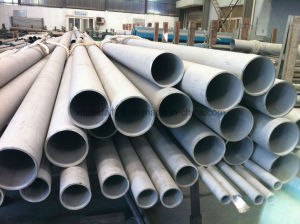 Tp316ti Stainless Steel Seamless Tube and Pipe pictures & photos