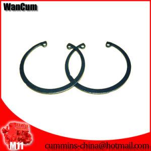 Cheapest Cummins Engine Parts M11 Piston Ring Retaining 3016652 pictures & photos