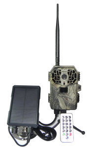 HD 12MP Trail Hunting Camera for Animal Observation pictures & photos