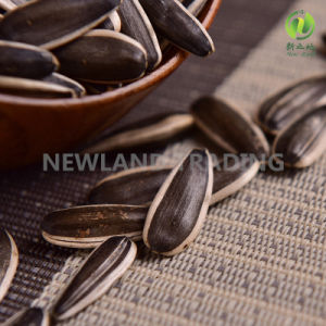 Chinese Wholesale Sunflower Seeds 363 for Health Food pictures & photos
