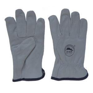 Goat Grain Leather Drivers Driving Gloves pictures & photos