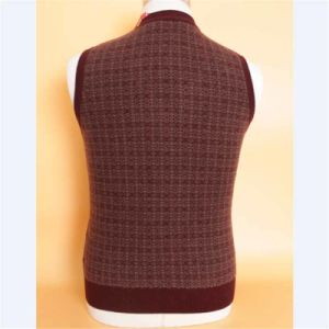 Bn1510 Yak Wool Sweaters/ Cashmere Sweaters/ Knitted Wool Sweaters pictures & photos