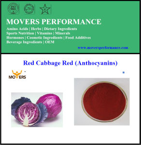 Natural Plant Extract Water Soluble Red Cabbage Extract pictures & photos